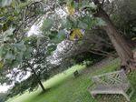 Treebench