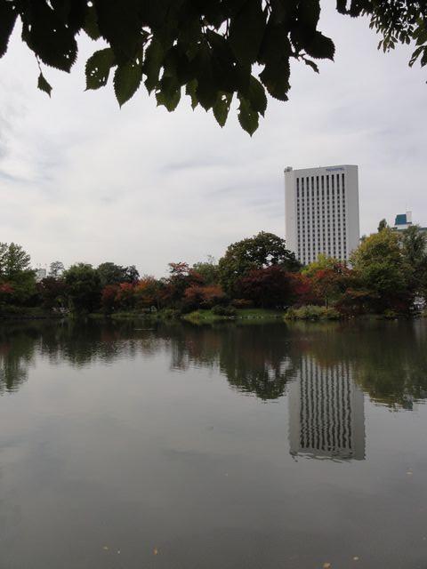 Nakajimapark01