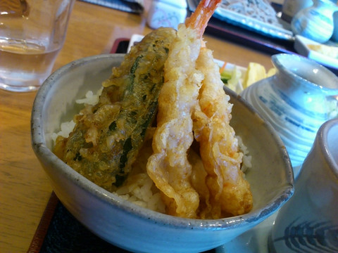 Mini_tendon