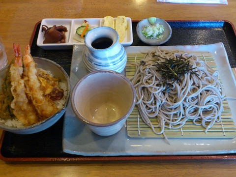 Tendon_set