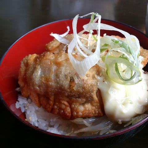 Fried_dumplings_bowl