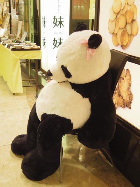 Panda_limp