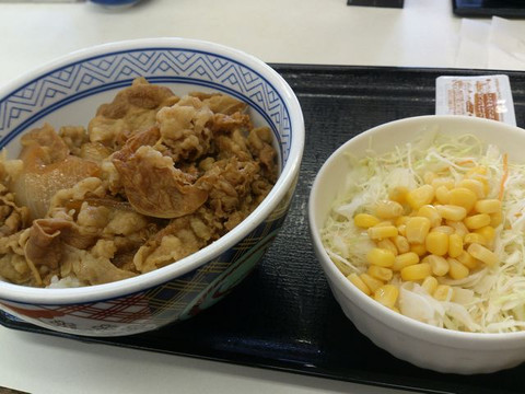 Salad_and_beef_bowl