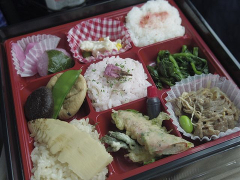 Spring_color_lunch_box
