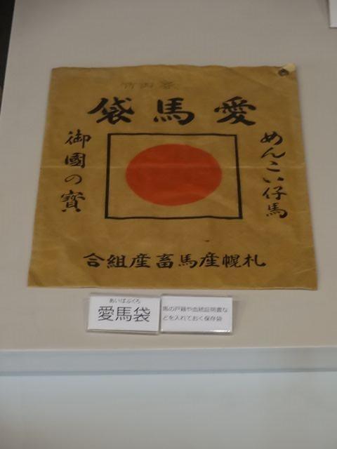 Eniwa_local_museum04