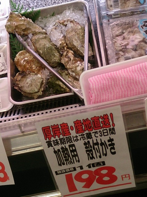 Oyster04