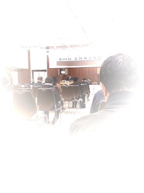 General_meeting_of_shareholders