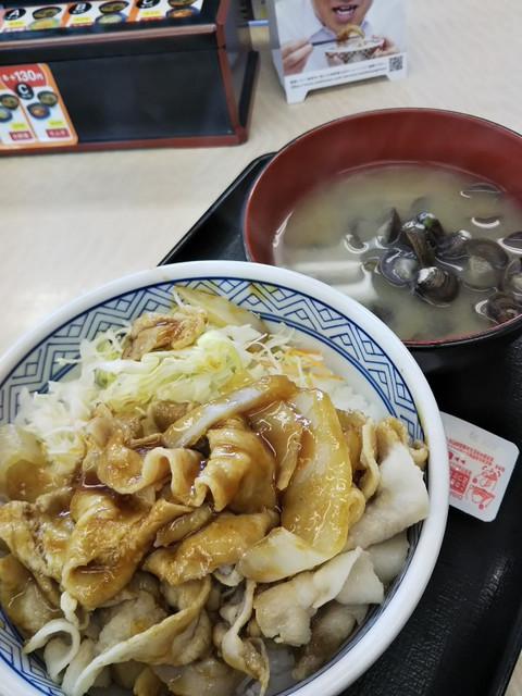 20190109_yoshinoya