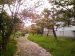 Kita_shiroishi5