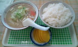 Tonjiru_rice_2