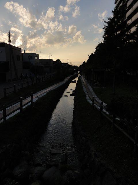 Yasuharuriver