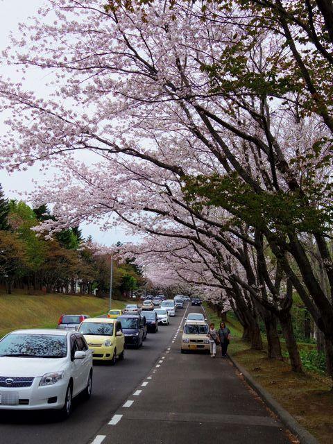 Effects_gokusai