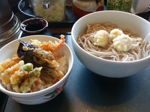 Hiyashi_umeten_soba