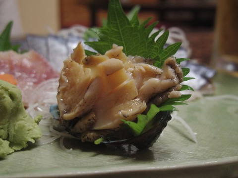 Sashimi_of_abalone