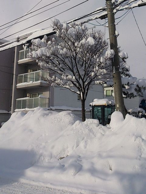 Heavy_snow2