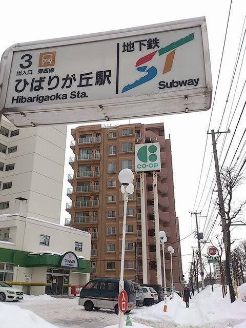 Hibarigaoka_station