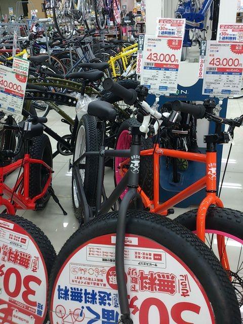 Fat_bike_bronx