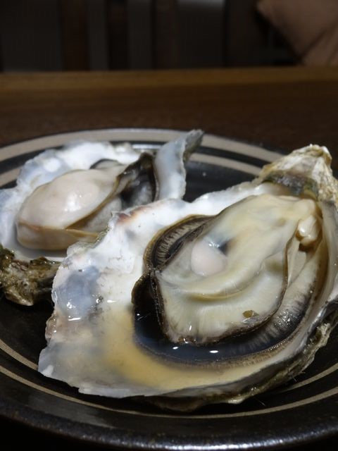 Oysters_of_saroma