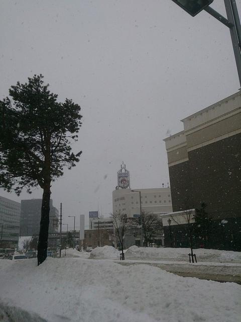 Arc_city