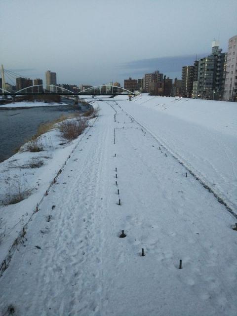 20200325_toyohira-river2
