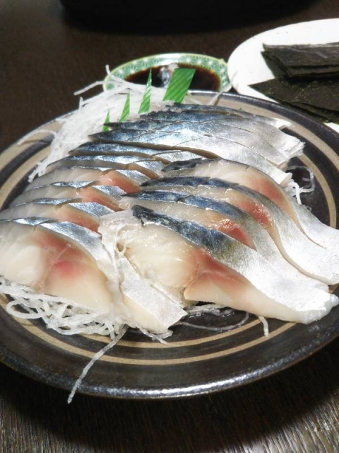 20201115_raw-mackerel