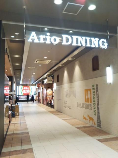 Ario-1f