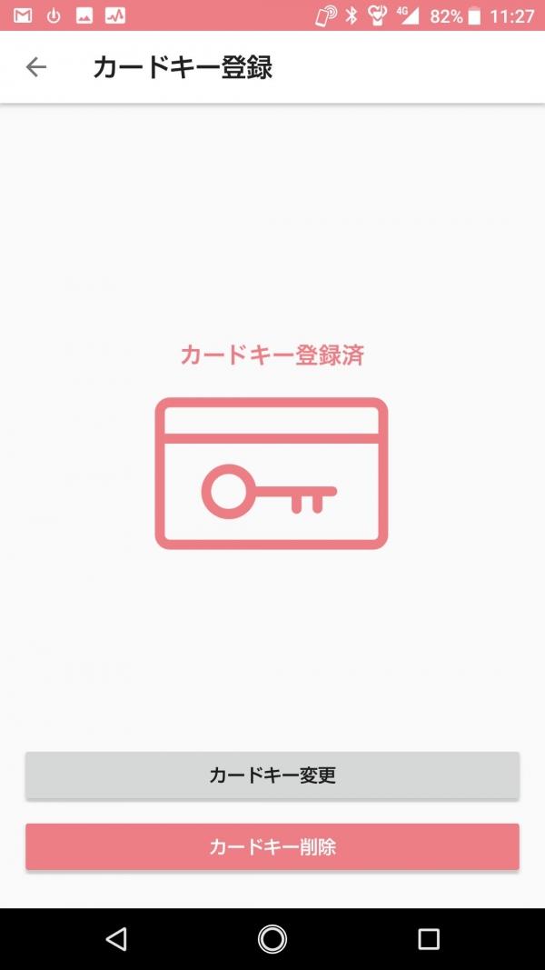 Card-entry04